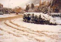 Piano S.ta Maria: La nevicata dell'8 gennaio 1981   - Alcamo (6034 clic)