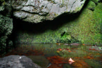 Sorgente acqua rocca  - Zafferana etnea (2078 clic)