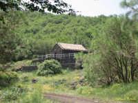 rifugio santa maria  - Randazzo (2162 clic)