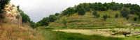 parco suburbano di maletto  - Maletto (5011 clic)