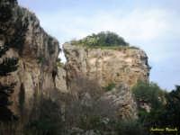 nei pressi dell'orecchio di Dioniso  - Siracusa (2214 clic)