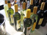 Giornata Vino e Giovani Facoltà di Agraria Marzo 2009  - Catania (5307 clic)
