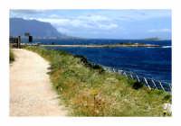 La riserva dal lato di Barcarello (Sferracavallo)....In lontananza si vede l'ingresso...  - Palermo (8010 clic)