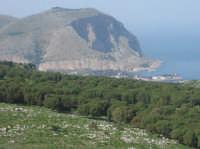 La montagna di Capo Gallo... Si vede sulla cima il semaforo  - Palermo (7061 clic)