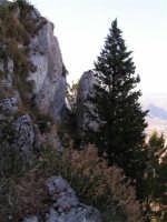 Scorcio di paesaggio visto dal Castello di Caltabellotta  - Caltabellotta (1650 clic)
