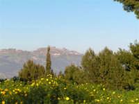Caltabellotta: Veduta dal Monte San Calogero  - Caltabellotta (1125 clic)