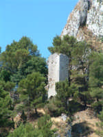 Caltabellotta: Torre del castello  - Caltabellotta (1203 clic)