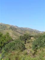 Paesaggio primaverile caltabellottese. Sullo sfondo in lontananza in pizzo di Caltabellotta  - Caltabellotta (1835 clic)