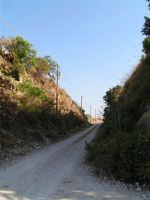 La Ex Linea Ferroviaria Burgio - San Carlo - Castelvetrano: Ex sede ferroviaria in trincea nei pressi di San Carlo  - San carlo di chiusa sclafani (2472 clic)