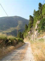 La Ex Linea Ferroviaria Burgio - San Carlo - Castelvetrano: Ex sede ferroviaria nei pressi di San Carlo  - San carlo di chiusa sclafani (1986 clic)
