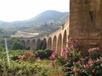 La Ex Linea Ferroviaria Burgio - San Carlo - Castelvetrano: Viadotto sul fiume Sosio nei pressi di San Carlo  - San carlo di chiusa sclafani (1912 clic)