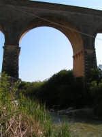 La Ex Linea Ferroviaria Burgio - San Carlo - Castelvetrano: Viadotto sul fiume Sosio nei pressi di San Carlo  - San carlo di chiusa sclafani (1745 clic)
