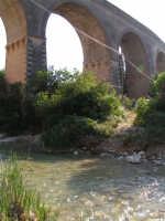 La Ex Linea Ferroviaria Burgio - San Carlo - Castelvetrano: Viadotto sul fiume Sosio nei pressi di San Carlo  - San carlo di chiusa sclafani (1970 clic)
