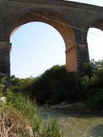 La Ex Linea Ferroviaria Burgio - San Carlo - Castelvetrano: Viadotto sul fiume Sosio nei pressi di San Carlo  - San carlo di chiusa sclafani (1882 clic)