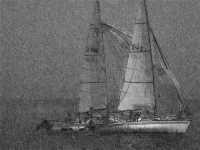 (1887 clic)