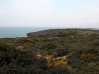 Panorama di Vendicari  - Vendicari (3283 clic)