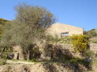 Vecchia casa di campagna  - Faro superiore (4056 clic)