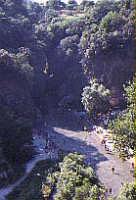 le gole di alcantara  - Alcantara (5442 clic)