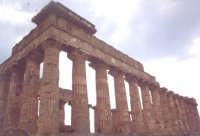 uno dei  templi di Selinunte.  - Selinunte (4779 clic)