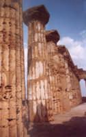 colonne del tempio di selinunte  - Selinunte (3162 clic)