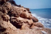 Cane che guarda il mare Le Sculture di Gerry  - San giorgio di sciacca (3018 clic)