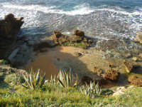 zabbare sul mare  - Torretta granitola (5231 clic)