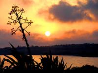 tramonto marino  - Sampieri (1507 clic)