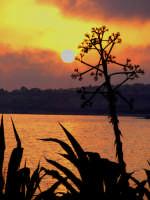 tramonto marino  - Sampieri (1512 clic)