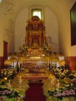 Chiesa Madre di S.Agata Giovedi Santo Altare della Reposizione i germogli e i fiori  - Alì (6050 clic)