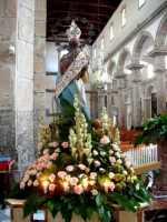 Festa di Santa Maria del Bosco 2009  Solenne incoronazione  - Alì (6963 clic)
