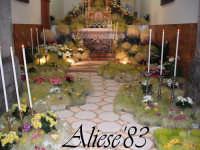 Altare delle Reposizione Giovedi Santo 2009  - Alì (9459 clic)