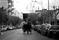 passeggiata in carrozza verso il porto di Palermo  Michele Mogavero
