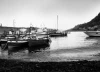 Il porto  - Santa maria la scala (3421 clic)