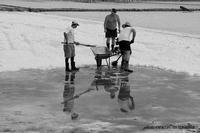 operai nelle saline   - Trapani (2015 clic)