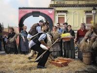 a pisatura Dimostrazione e scenografia del gruppo folkroristico la spiga di Raddusa, sull'antica raccolta del grano  - Nicolosi (3173 clic)