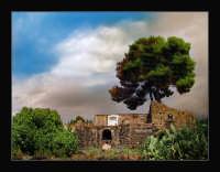 Rustico siciliano  - Catania (2236 clic)