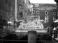 Fontana dell'Amenano   - Catania (2025 clic)