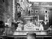 Piazza duomo .Fontana dell'Amenano  - Catania (1635 clic)
