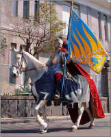 Festa del patrono 12 Aprile,durante lo svolgimento della giostra dei cavalieri.  - San gregorio di catania (4269 clic)