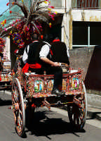 Festa di S.Alfio  - Trecastagni (2916 clic)