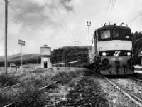 Treno merci nella stazione di Villarosa.  - Villarosa (4348 clic)