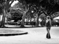 Giardini Pubblici  - Siracusa (1655 clic)