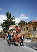 Festa di Sant'Alfio Sfilata carretti siciliani  - Trecastagni (4120 clic)