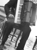 un suonatore di fisarmonica   - Siracusa (2410 clic)