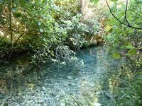 Riserva Naturale di Pantalica (7129 clic)
