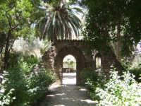 orto botanico di palermo PALERMO Carmelinda Mandina