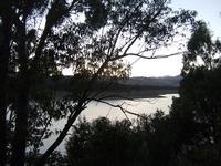 All'imbrunire il lago Scanzano di Ficuzza  - Ficuzza (3750 clic)
