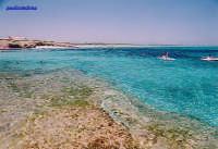 Spiaggia al confine sud della riserva naturalistica di Vendicari , caratterizzata da sabbia bianca : come i Caraibi .  - San lorenzo (20129 clic)