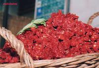 Pomodori secchi  - Pachino (9611 clic)
