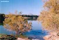 Lago di Pozzillo  - Regalbuto (2907 clic)